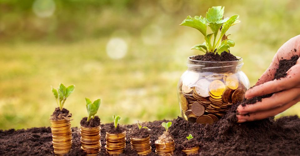 Enjoy the benefits of compound interest and see your money grow!